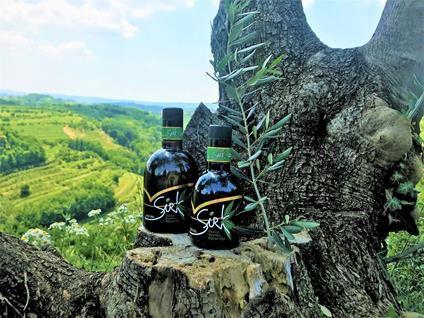 Olivno olje, Ivan Sirk, izbor