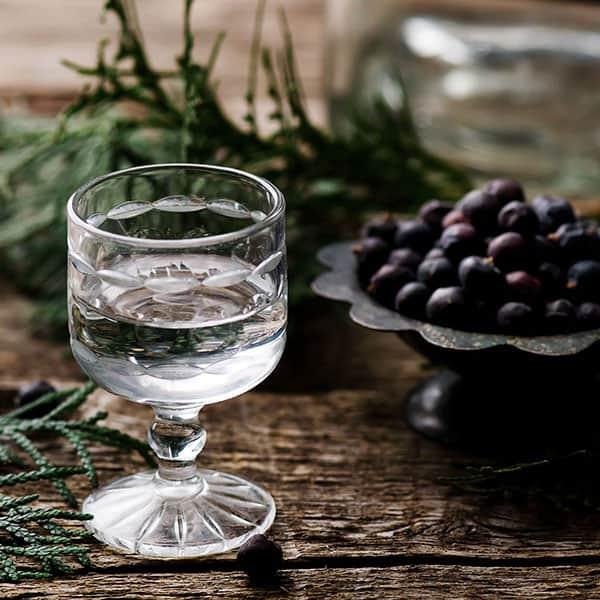 Gin in brinove jagode