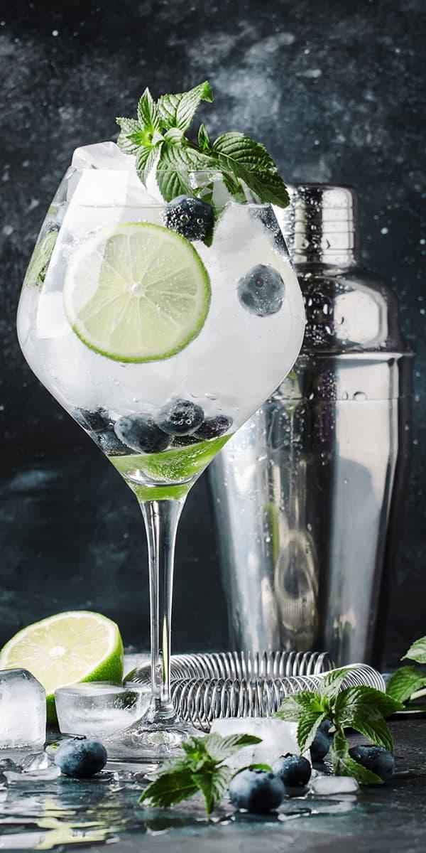 Gin z ledom, limeto in meto
